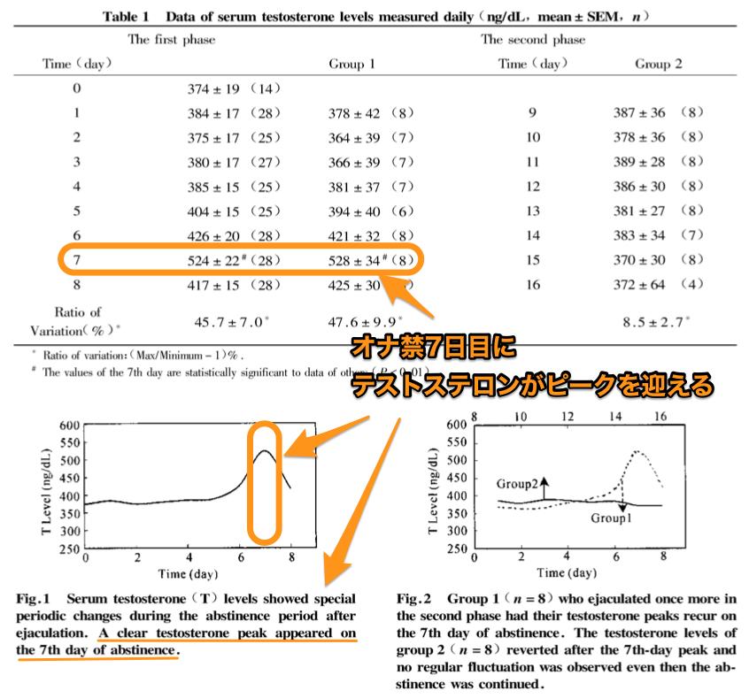 オナ禁とテストステロンの関係